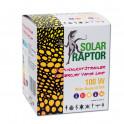 Solar raptor auto ballast 100w