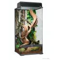 Terrarium naturel 30 x 30 x 45 cm