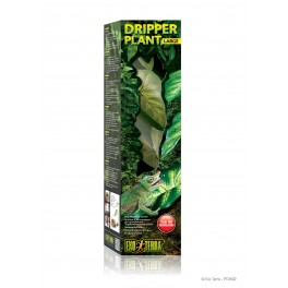 Dripper plant LARGE